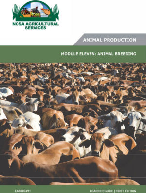 Animal Breeding _ LG80003_11