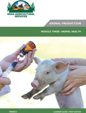 Animal Health - PM8003_3