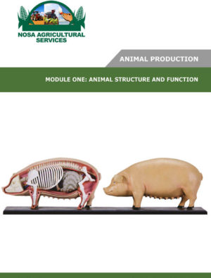 Animal Structure and Function _ LG80003_1