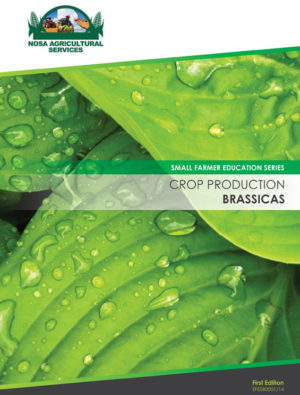 sfes80001_14_brassicas